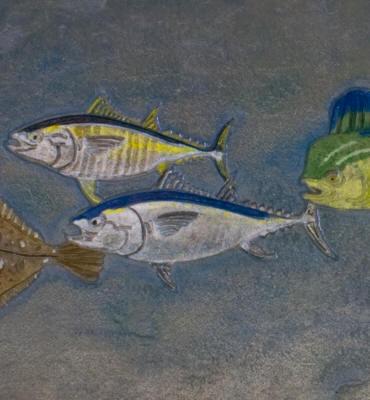 Matcrete Sport Fish Border